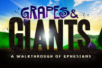 Grapes and Giants